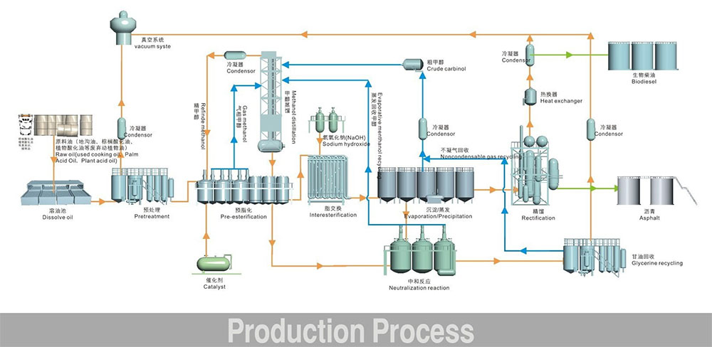 biodiesle production process2