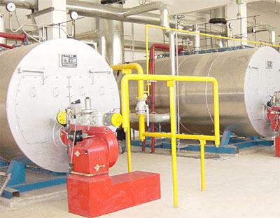 Biodiesel Hot Water Boiler Manufacturer