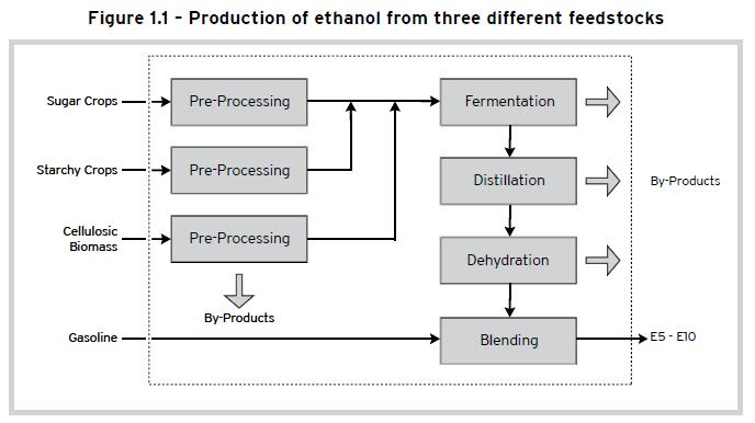 production of ethanol 1