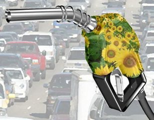 New EU fuel pump labeling reflects biofuel content