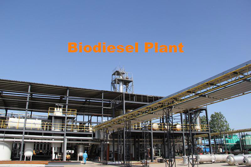 Biodiesel industry analysis